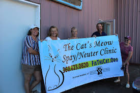 Cat's Meow: Spay and Neuter Clinic in Chehalis May Open by End of Month |  News | chronline.com