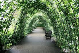 garden trellis slubne suknie info