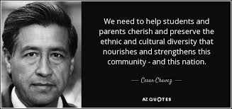 diversity quotes page a z quotes