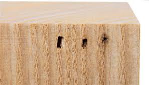 examine nailer nail gauges and lengths