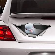 Amazon Com Dove Car Decal Vinyl Decal Dove Sticker Vinyl Sticker For Cars Windows Walls Fridge Toilet And More 6 Inch Home Kitchen