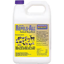 Liquid Fence Deer And Rabbit Repellent 1 Gallon Concentrate Gardeners Edge