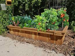 why raised beds are best deep roots