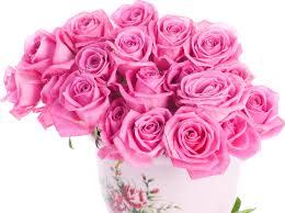 bouquet roses flower wallpaper 2592x1935