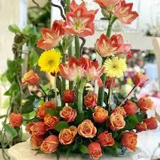 الرسمية للشراء أحذية مزاجه زهور جميلة ورائعة Taskinlardogaldepo Com