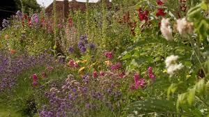 english garden designer gertrude jekyll