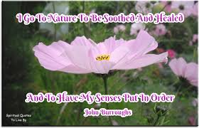 nature quotes to live by