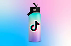 security and privacy in TikTok ...