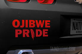 Ojibwe Pride Feather Native American Decal 6 X 3 By Taino Rising Taino Rising