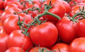 Descienden los precios en origen del tomate y el pimiento