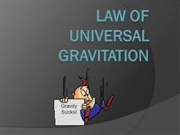 Gravity Sucks! The acceleration due to gravity on the International space  station is 8.7 m/s 2. If an 50 kg astronaut stood on a scale what would it.  - ppt download