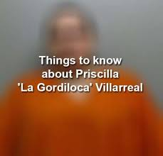 GordiLoca' case rages on as City of Laredo, Villarreal file briefs in  arrest dating back to 2017 - Laredo Morning Times