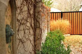11 Backyard Fence Ideas Beautiful Privacy For People Pets And Property Perimtec