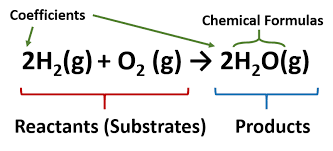 ch104 chapter 5 chemical reactions