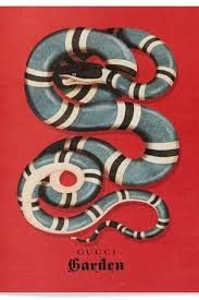 gucci snake wallpaper to