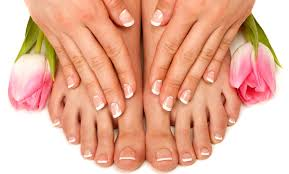 dragonfly nail spa boutique from 6