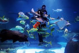 「遠雄海洋公園」的圖片搜尋結果