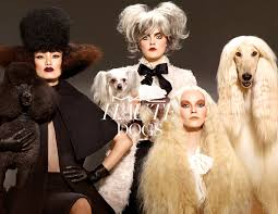 makeup collection inspired by dogs