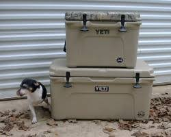 survival gear review yeti coolers