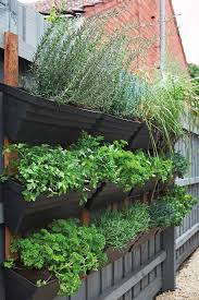 grown your own herb garden home