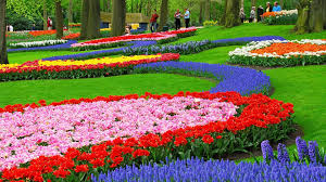 flower garden wallpapers 28386k5