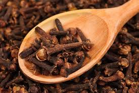 clove oil is the homemade remedy that
