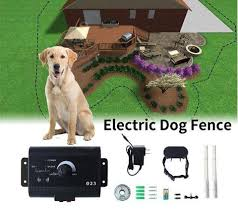 Invisible Electric Dog Fence Revomes Com