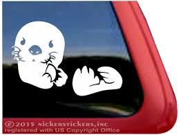 Sea Otter Decals Orca Whale Stickers A Nickerstickers