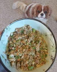 homemade dog food en and heart