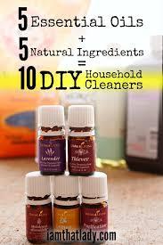 diy household cleaners make 10