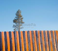Orange Black Wooden Fence Background For Trees Photo Image Picture Free Download 501444093 Lovepik Com