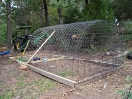 Cattle Panel Chicken Run Chickens Backyard Chicken Coop Building A Chicken Coop