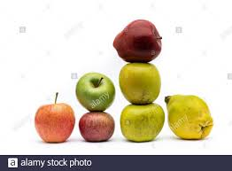 Seven apples of different types isolated from the white background ...