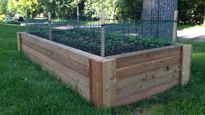 Dilemma I Have Rabbits Including Baby Bunnies Living In Or Near My Yard Not Good And I Want To Grow V Garden Beds Diy Raised Garden Raised Garden Beds Diy