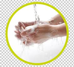 Hand Washing Soap Cleaning PNG, Clipart, Cleaning, Common Cold ...