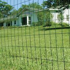 Fencer Wire 2 Ft X 25 Ft 16 Gauge Green Pvc Coated Welded Wire Fence With Mesh Size 3 In X 2 In Wv16 G2x25m32 The Home Depot