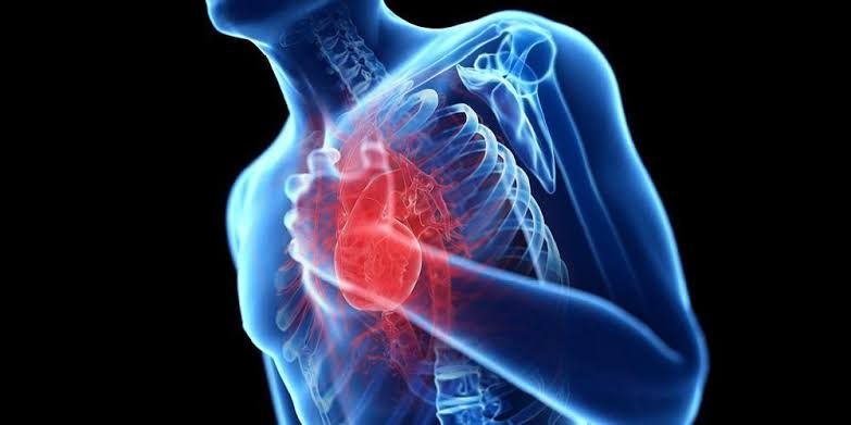 "Hasil gambar untuk penyakit jantung"""