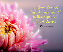 flower life quotes -