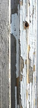 110 006 Wooden Panel Rustic Photos Free Royalty Free Stock Photos From Dreamstime