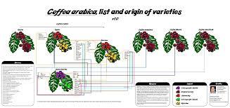 list of coffee varieties wikipedia