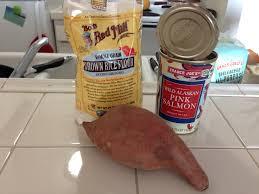 homemade salmon treats my mutt friends