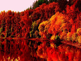 autumn lake one hd wallpaper pictures