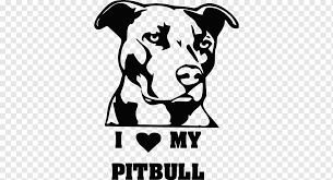 Car Window American Pit Bull Terrier Decal Sticker Car White Mammal Carnivoran Png Pngwing