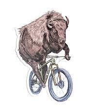 Animals On Bike Vinyl Decal Kickstand Culture