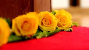 مقطع فيديو زهور ورد للبنات ازهار Hd Youtube