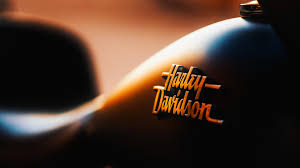 harley davidson bike logo wallpaper