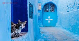 9 Dicas de Chefchaouen, a cidade azul do Marrocos | Vida Cigana