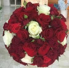 أفضل رخيصة شراء الآن أحذية حصرية اجمل الورود الحمراء المتحركة