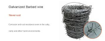 Galvanized Barbed Wire Coil 12x12 For Sale Razor Barbed Wire Manufacturer From China 108837978