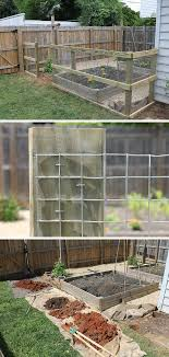 Chicken Wire Fence Diy Backyard Ideas On A Budget Diy Garden Fence Ideas